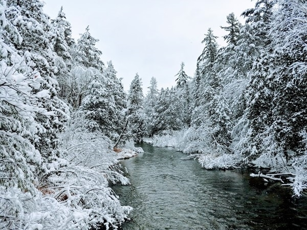 Visit the Boardman River near Sheck's Campground for winter beauty