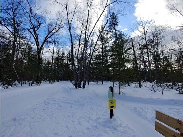 Love to xc ski or fat bike? The VASA trail is the place to be