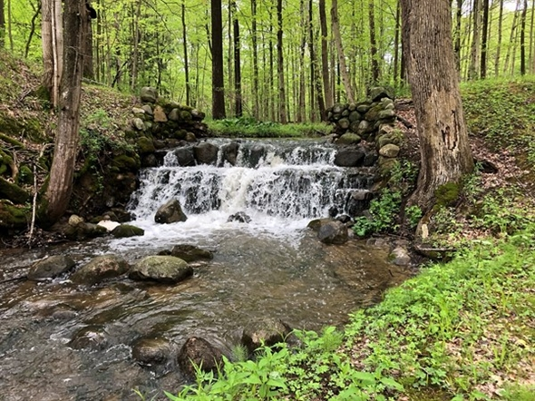 One of my favorite spots in Southwest Michigan is this beautiful waterfall near Berrien Springs