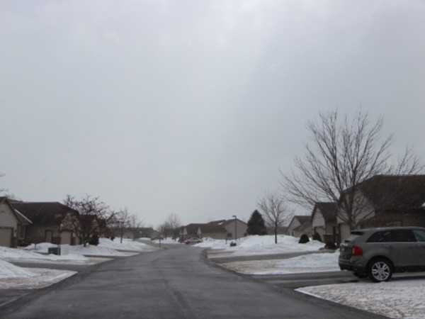 Neighborhood view of Maple Lake, overcast March day, waiting for sunshine and tulips!