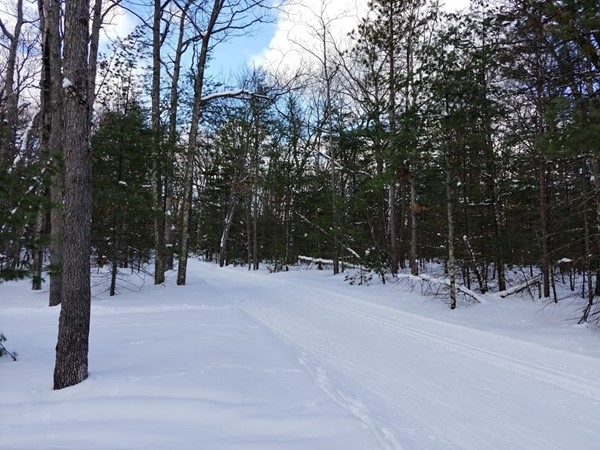Hit the VASA xc ski trails for a great workout with beautiful views