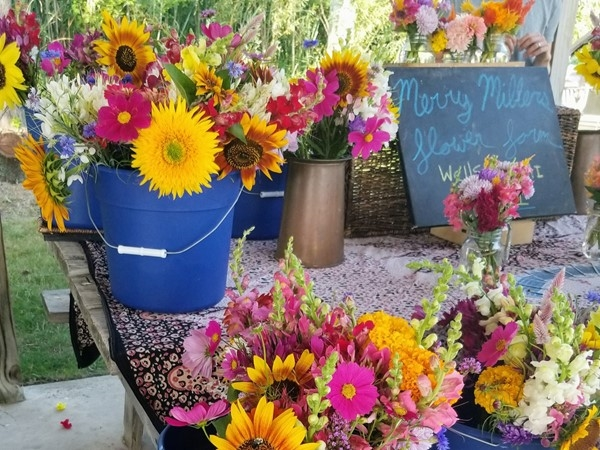 Great seasonal flowers and produce at Elberta Farmer's Market