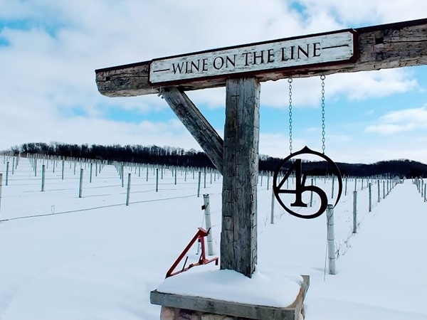 45 North Vineyards - a winter adventure on the trails, a cozy fireplace and a favorite wine or cider