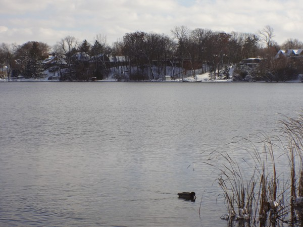 Early winter view of Reeds Lake