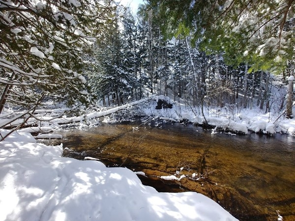 A Boardman River snowshoe hike is the perfect way to spend an afternoon with friends