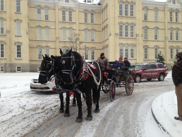 Horse drawn carriage rides at the Village at the Grand Traverse Commons
