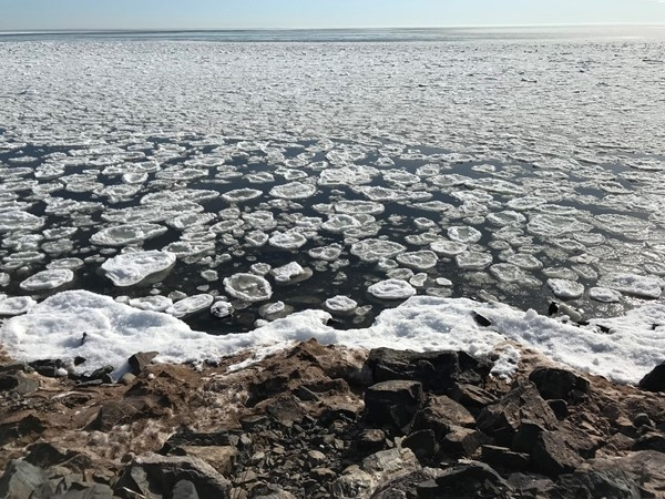 Pancake Ice along the shores of Lake Superior on a sunny spring day