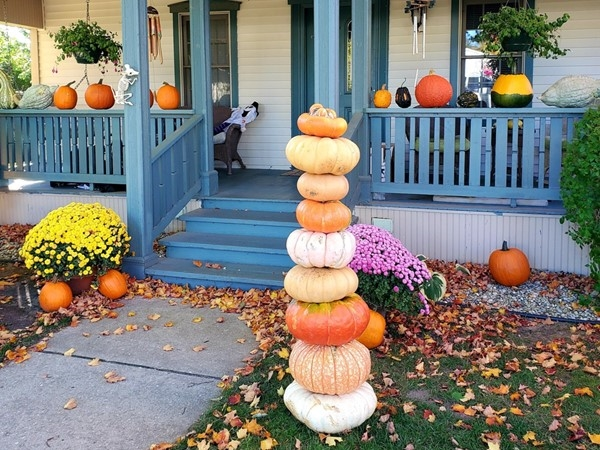Nice display at the pumpkin man's house