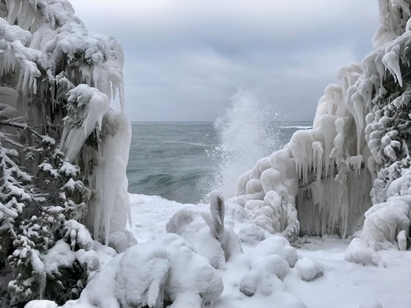 Frozen trees along Lake Superior's shoreline in Marquette