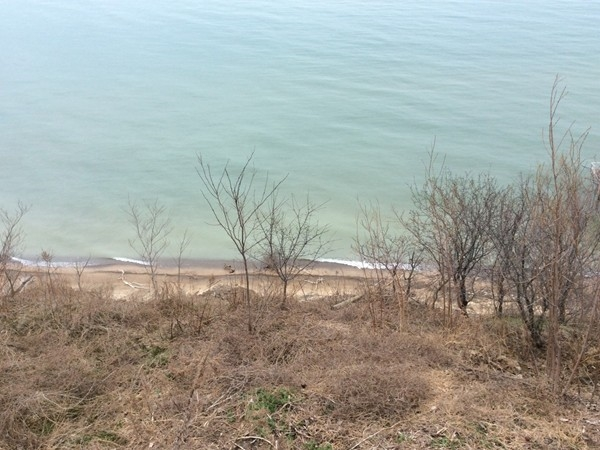 Benton Harbor shoreline