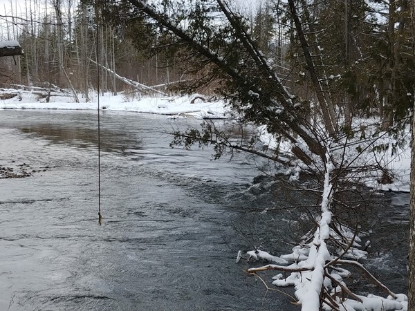 A great day to snowshoe along the Boardman River, but maybe a bit chilly to swing into the river