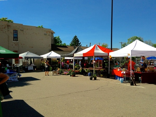 A beautiful day at the Saline Farmers Market
