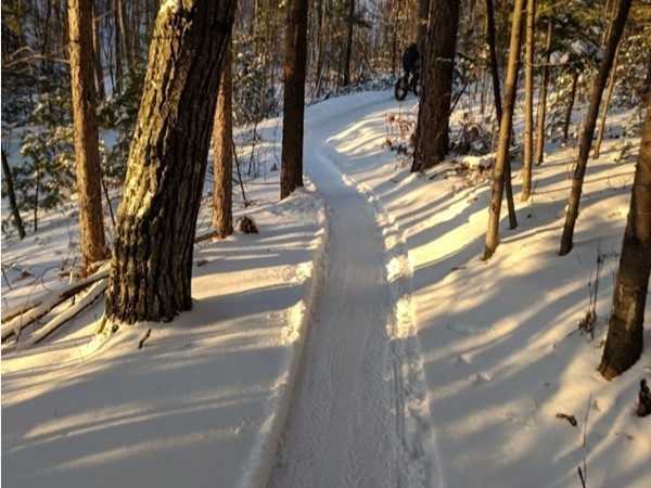 Last glimpse of sunshine snowbiking on the Silver Lead Trail the other day