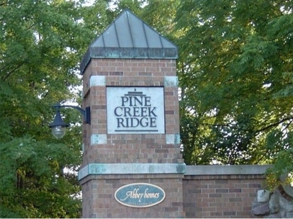 Pine Creek Ridge is one of Brighton's most sought after neighborhoods!