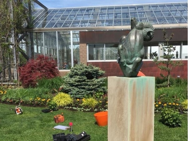 Kent Garden Club plants the Ram's Garden at Frederik Meijer Gardens every year