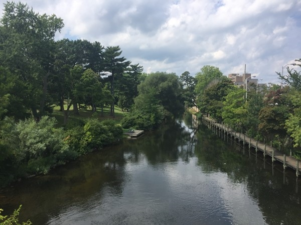 Stroll along the Boardman River on the boardwalk or through Hannah Park