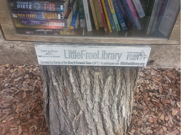 Little Free Library info in Mott Park