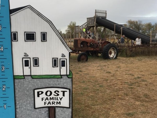 Hayrides, slides, petting area, and delicious donuts...what's not to love at the Post Family Farm