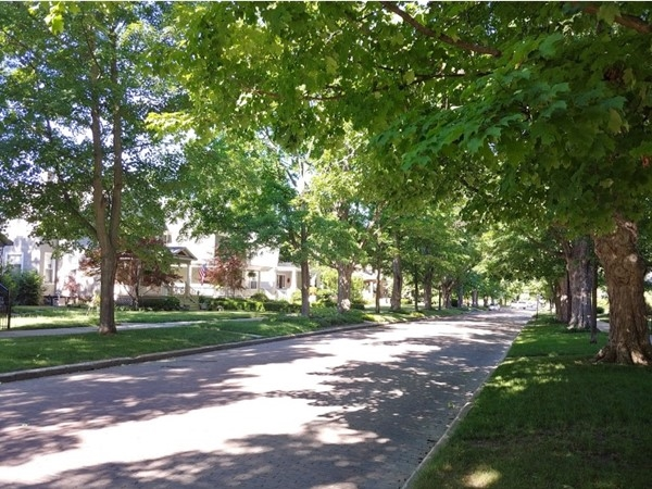 Shady, tree-lined streets are part of the charm of downtown Traverse City