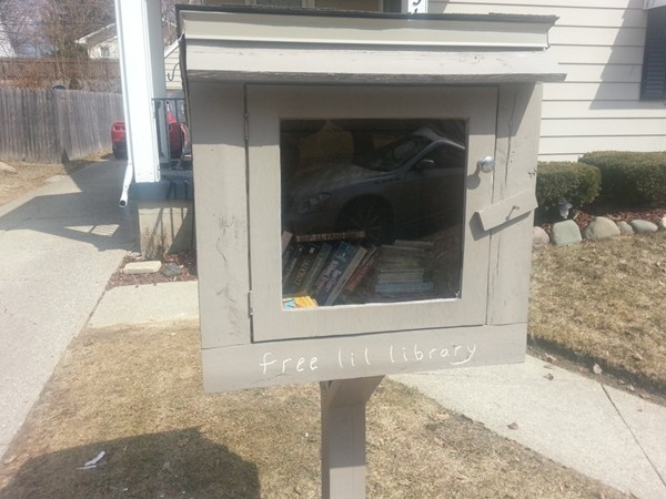 Little Free Library #2 in Mott Park