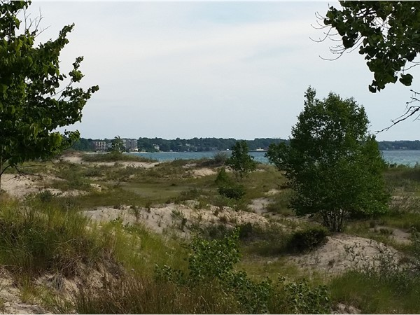 A walk through the forest into soft sand dunes, and out to the water